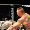 UFC 141 marks Lesnar's final UFC fight before WWE return