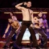 """Magic Mike"" reveals more than just hard bodies and party lifestyle"