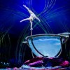 """Amaluna"" celebrates womanhood through athletic artistry and music"