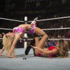 WWE Diva's Champion has a natural Flair for wrestling